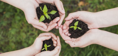 Desde Brillante estamos comprometidos con el cuidado del medioambiente