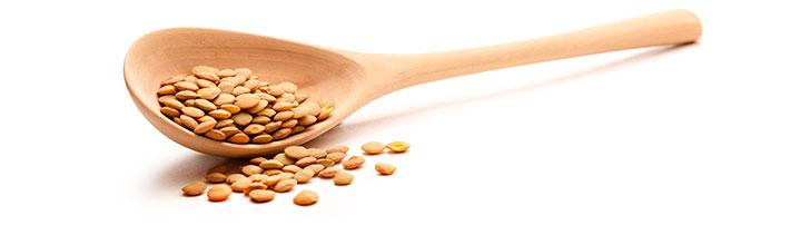 Las lentejas nos aportan una gran cantidad de proteínas y vitaminas al organismo